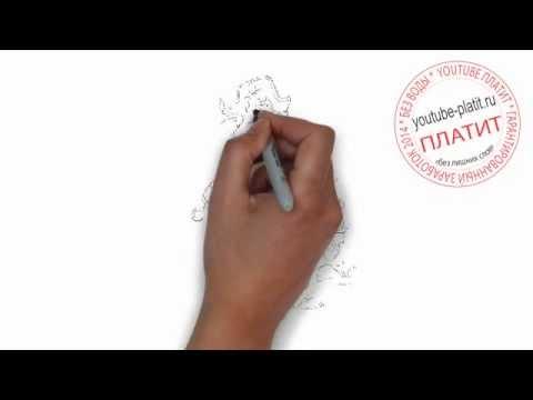 Как нарисовать пирата красная борода поэтапно карандашом