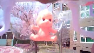 Baby doli toys Fly with drone / learn colors / Trò Chơi Săn Rắn Hổ Mang