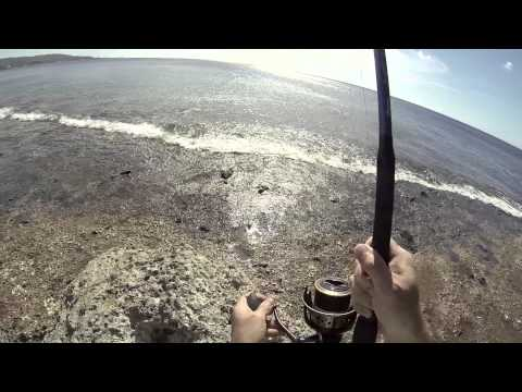 Fishin Guam: Yellowlip Emperor 5-26-13