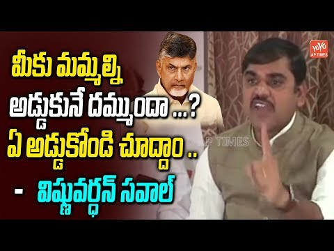 BJP Vishnuvardhan Reddy Sensational Comments On Chandrababu | AP Elections 2019 | YOYO AP Times