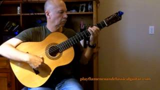 Flamenco Guitar Verdiales