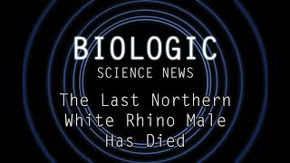 Science News - The Last Northern White Rhino Male Has Died