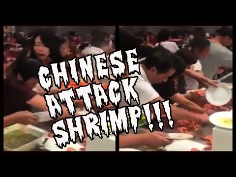 Chinese Tourists ATTACK Jumbo Shrimp Buffet