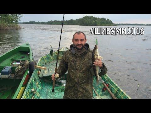 Шибуми 2016 - небольшой видеоотчет о рыбалке под Саратовом
