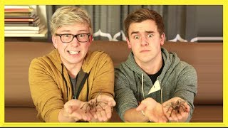The Tarantula Challenge (ft. Connor Franta) | Tyler Oakley