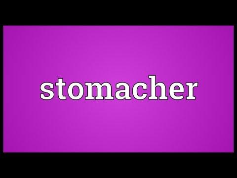 Header of stomacher