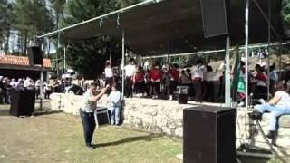 download musica Rancho Folclórico da Castanheira