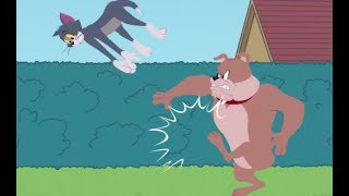 Tom and Jerry - Freefalling Tom - Tom and Jerry Games Cartoon For Kids