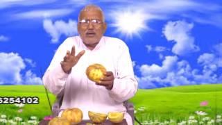pitte ki pathri ka desi ilaj in hindi( पथरी का घरेलू इलाज)