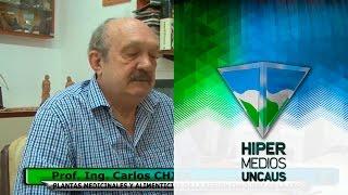 Prof. Ing. Carlos CHIFA - PLANTAS MEDICINALES Y ALIMENTICIAS DE LA REGIÓN CHAQUEÑA