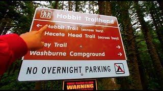 The Oregon Trail ....IRL