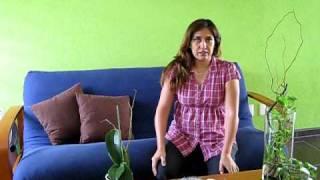 DkoraMarthaSantana.com Diseños, Arreglos Florales, Frutales Y Mas... en Guadalajara, Jalisco