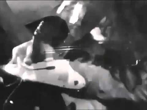 Lynyrd Skynyrd - Freebird video