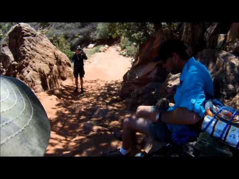Squirrel Attack at Grand Canyon