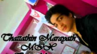 thattathin marayath mix