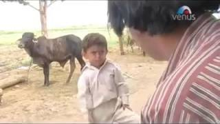 Shersingh Bhati guj bhaigiri
