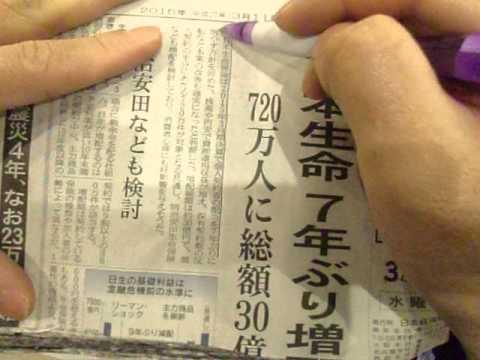 GEDC1993 2015.03.13 nikkei news paper