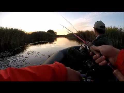 камские поляны рыбалка щука