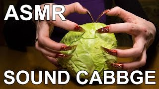 ASMR sound sleep & relax scratching tapping long nails with cabbage