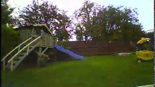 Tiny Whoop in the garden Eachine EV800D DVR
