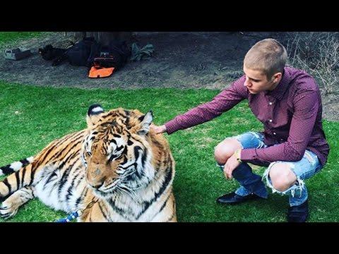 Justin Bieber Ultimato No Más Selfies Con Animales Exóticos