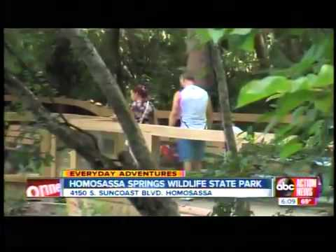 Everyday Adventures: Homosassa Springs Wildlife State Park