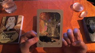 What is Donald Trump's Life Lesson? Tarot  & Oracle Reading