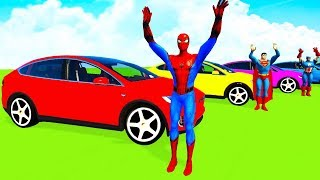 COLOR TESLA CARS & Boats w/Superheroes Cartoon for Kids and Babies w Nursery Rhymes