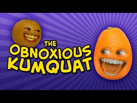 Annoying Orange - THE OBNOXIOUS KUMQUAT (feat. Katie Wilson)