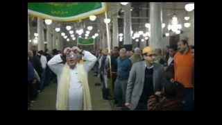 بالفيديو .. احتفالات الطريقة البرهانية في مصر بالمولد النبوي الشريف