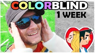 ONE WEEK WITH COLORBLIND GLASSES!