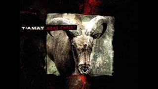 Tiamat - The Desolate One