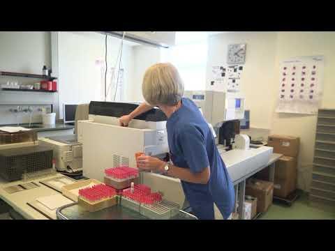 Blick hinter die Kulissen: Labor