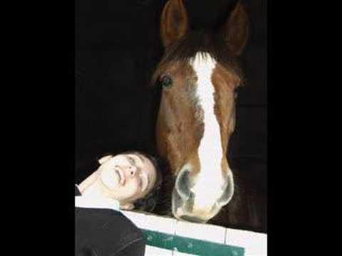 poney et chevaux