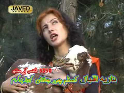 Pashto Song(nazia Iqbal Tapay) video