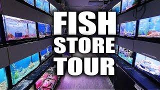 This aquarium store has EVERYTHING!!