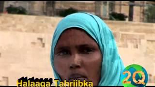 Halaaga Tahriibka: Daawo Gabadh Reer Burco Oo Si Murugo Leh Ula Hadlayasa Reer Burco