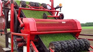 THIS IS HOW SOCCER GRASS IS MADE