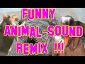 funny animal noises (Remix)