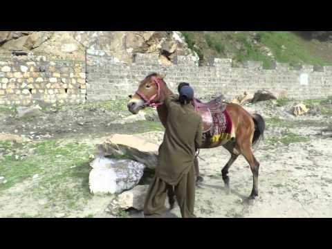 Vlog 15: My Motherland by Lord Aleem (Kaghan Valley)