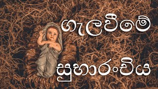 Supuwath Arana - 2019-12-11