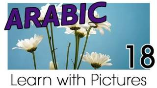 Learn Arabic - Arabic Plants Vocabulary