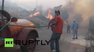 Лесные пожары бушуют на греческом острове Хиос