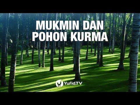 Mukmin dan Pohon Kurma - 5 Menit yang Menginspirasi