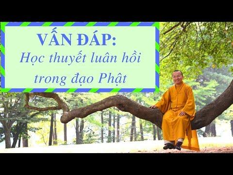 Vấn đáp: Học thuyết nhân quả luân hồi của Phật giáo