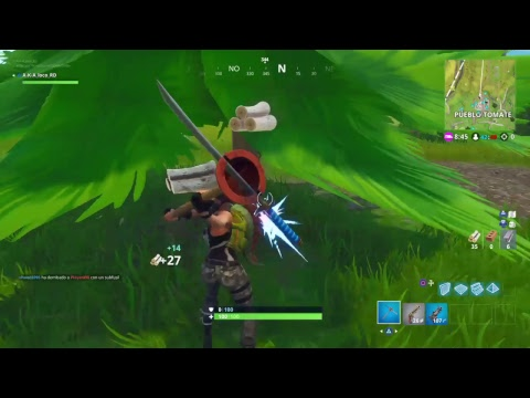 Fortnite game play._the w