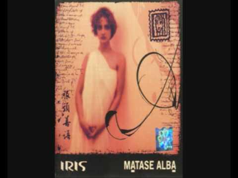 Iris - Matase Alba