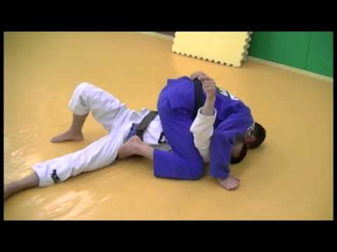 Caio Terra - Butterfly Guard Passing Series