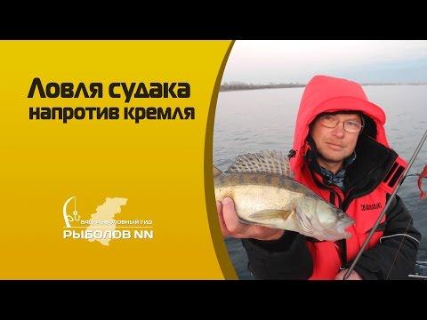 где лучше ловить рыбу нижний новгород