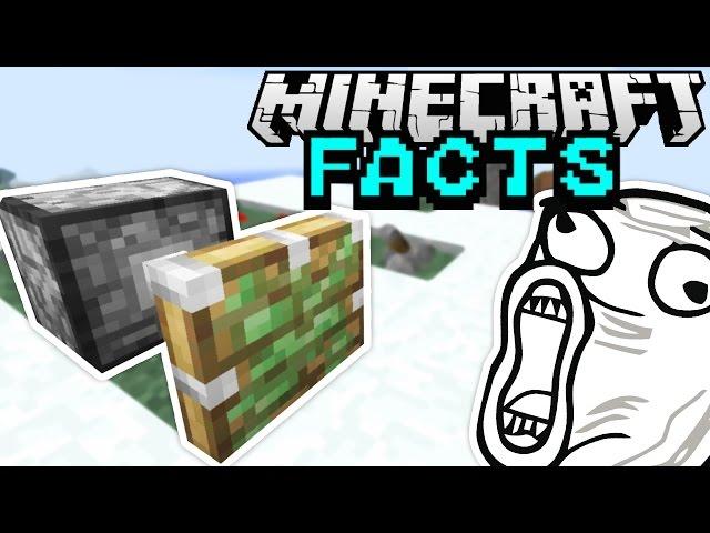 KLEBRIGER KOLBEN! | Minecraft Facts #59 | ConCrafter